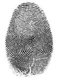 fingerprint mpression on paper by ink method clearly showing finger pattern